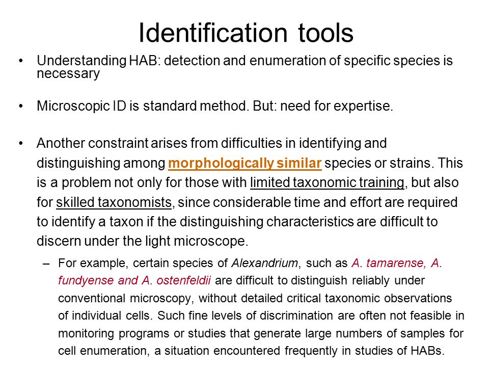 Identification tools Understanding HAB: detection and enumeration of specific species is necessary Microscopic ID is standard method. But: need for ex