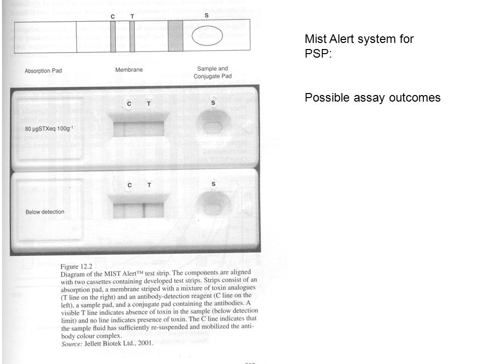Mist Alert system for PSP: Possible assay outcomes