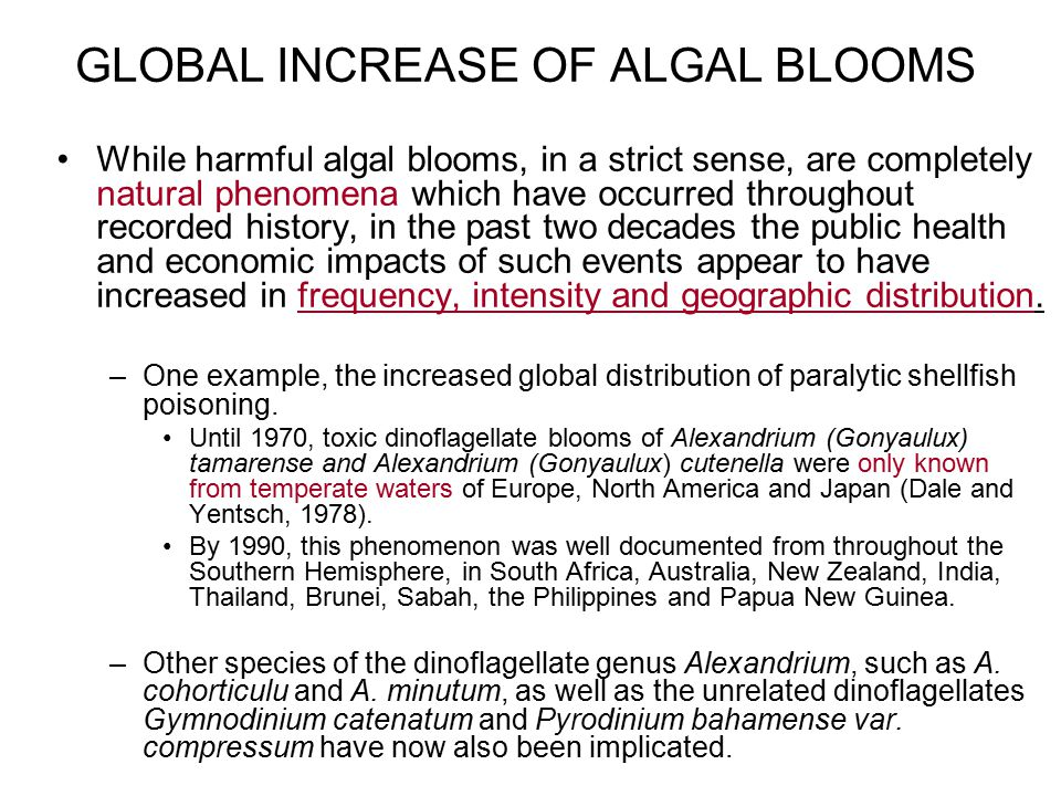 GLOBAL INCREASE OF ALGAL BLOOMS While harmful algal blooms, in a strict sense, are completely natural phenomena which have occurred throughout recorde