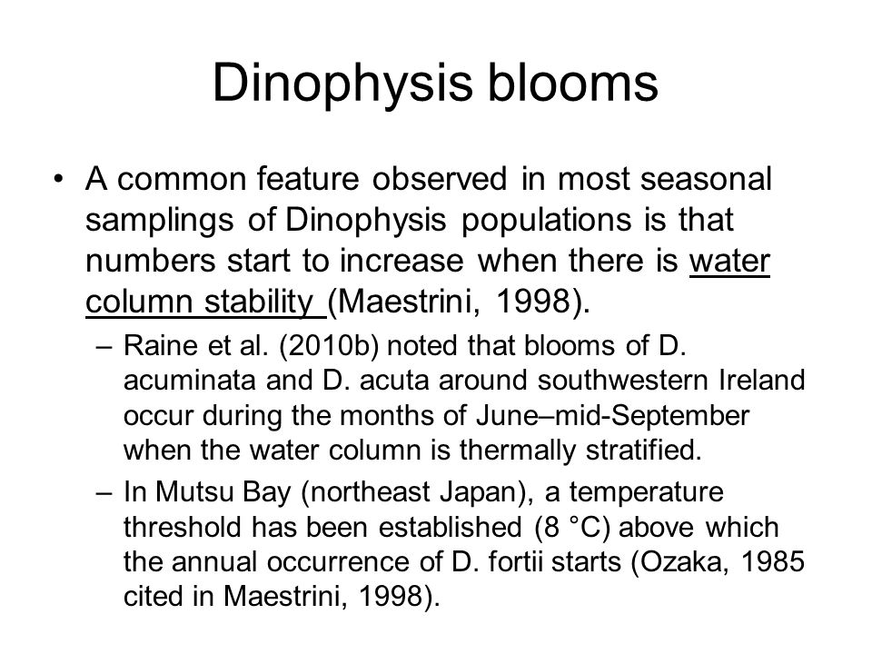 Dinophysis blooms A common feature observed in most seasonal samplings of Dinophysis populations is that numbers start to increase when there is water