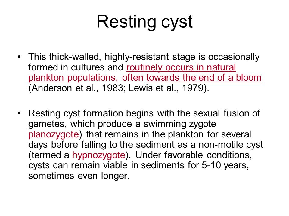 Resting cyst This thick-walled, highly-resistant stage is occasionally formed in cultures and routinely occurs in natural plankton populations, often