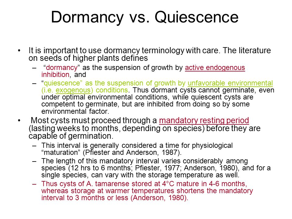 "Dormancy vs. Quiescence It is important to use dormancy terminology with care. The literature on seeds of higher plants defines – ""dormancy"" as the su"