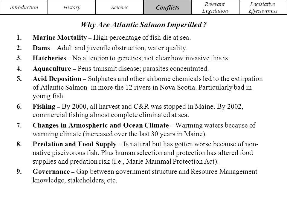 Introduction HistoryScience Conflicts Relevant Legislation Legislative Effectiveness Why Are Atlantic Salmon Imperilled .