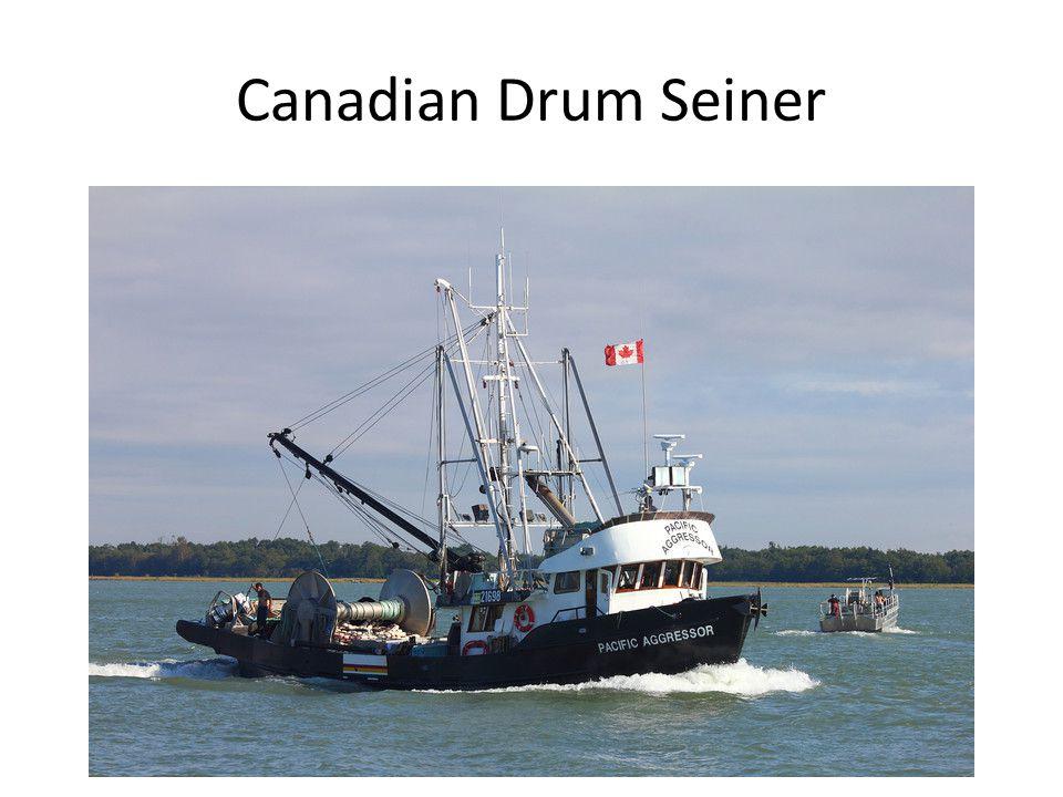 Canadian Drum Seiner