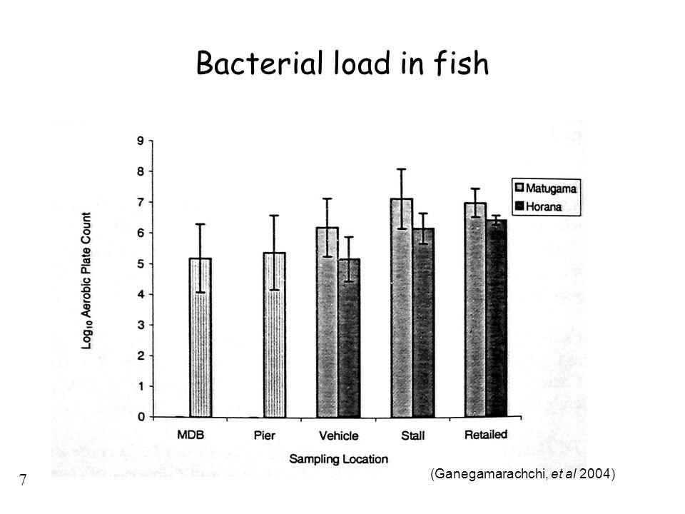 7 Bacterial load in fish (Ganegamarachchi, et al 2004)