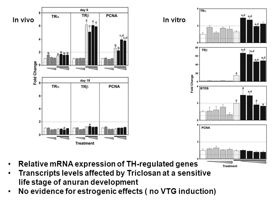 Relative mRNA expression of TH-regulated genes Transcripts levels affected by Triclosan at a sensitive life stage of anuran development No evidence for estrogenic effects ( no VTG induction) In vitroIn vivo