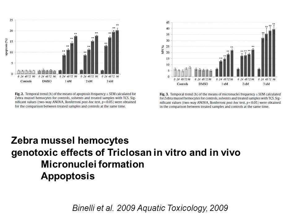 Binelli et al.