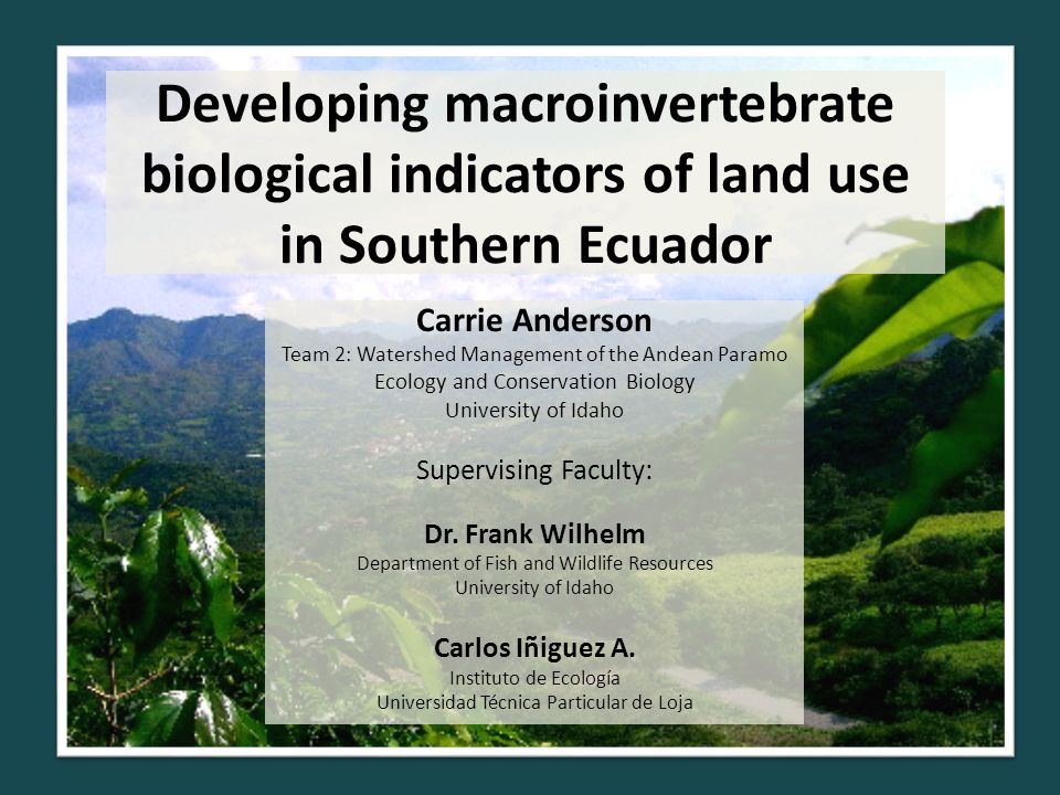 Developing macroinvertebrate biological indicators of land use in Southern Ecuador Carrie Anderson Team 2: Watershed Management of the Andean Paramo Ecology and Conservation Biology University of Idaho Supervising Faculty: Dr.