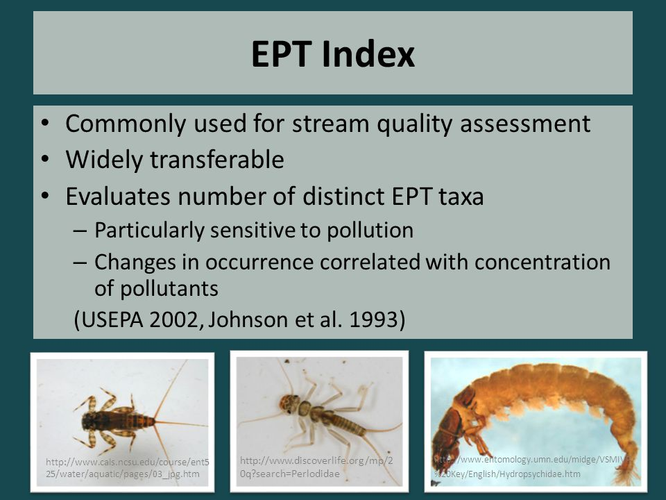 EPT Index Commonly used for stream quality assessment Widely transferable Evaluates number of distinct EPT taxa – Particularly sensitive to pollution – Changes in occurrence correlated with concentration of pollutants (USEPA 2002, Johnson et al.