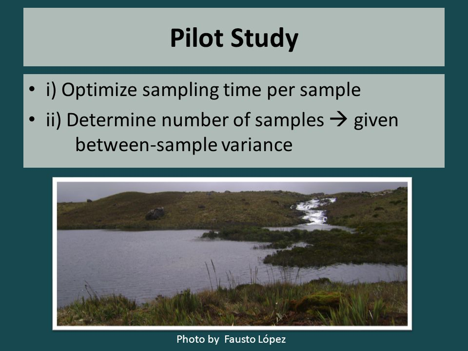 Pilot Study i) Optimize sampling time per sample ii) Determine number of samples  given between-sample variance Photo by Fausto López