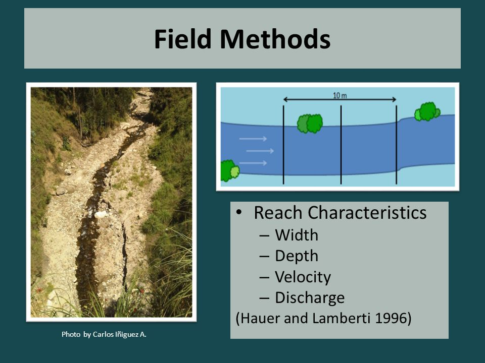 Field Methods Reach Characteristics – Width – Depth – Velocity – Discharge (Hauer and Lamberti 1996) Photo by Carlos Iñiguez A.