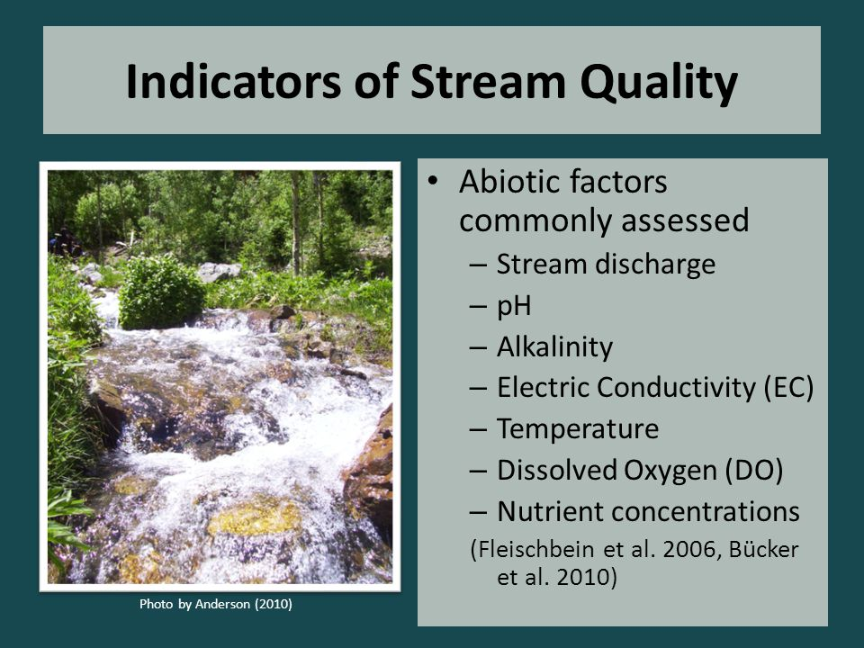 Indicators of Stream Quality Abiotic factors commonly assessed – Stream discharge – pH – Alkalinity – Electric Conductivity (EC) – Temperature – Dissolved Oxygen (DO) – Nutrient concentrations (Fleischbein et al.