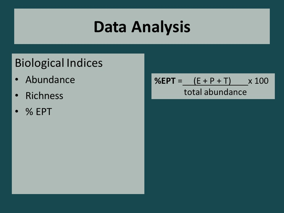 Data Analysis Biological Indices Abundance Richness % EPT %EPT = (E + P + T) x 100 total abundance