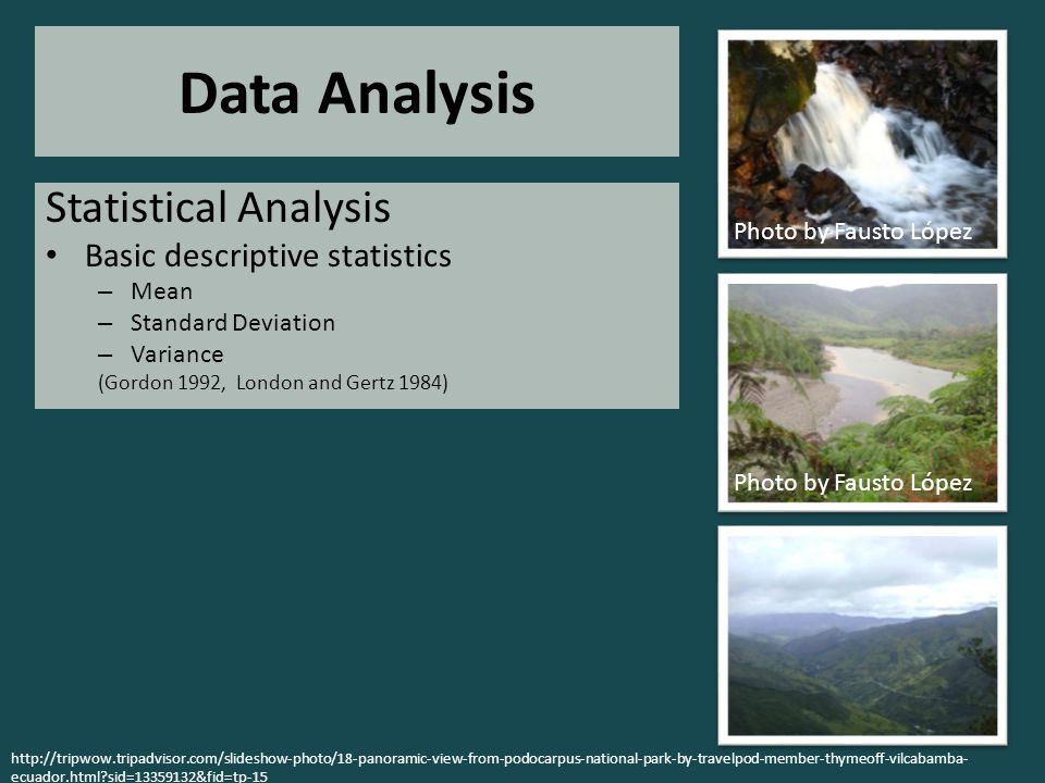 Data Analysis Statistical Analysis Basic descriptive statistics – Mean – Standard Deviation – Variance (Gordon 1992, London and Gertz 1984) Photo by Fausto López http://tripwow.tripadvisor.com/slideshow-photo/18-panoramic-view-from-podocarpus-national-park-by-travelpod-member-thymeoff-vilcabamba- ecuador.html sid=13359132&fid=tp-15