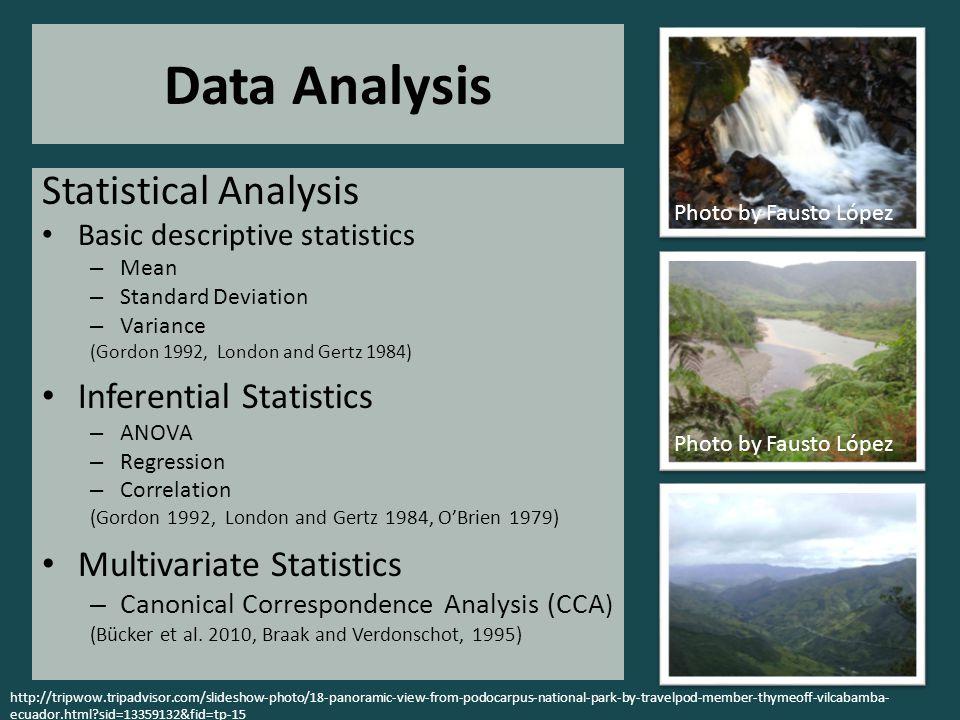 Data Analysis Statistical Analysis Basic descriptive statistics – Mean – Standard Deviation – Variance (Gordon 1992, London and Gertz 1984) Inferentia