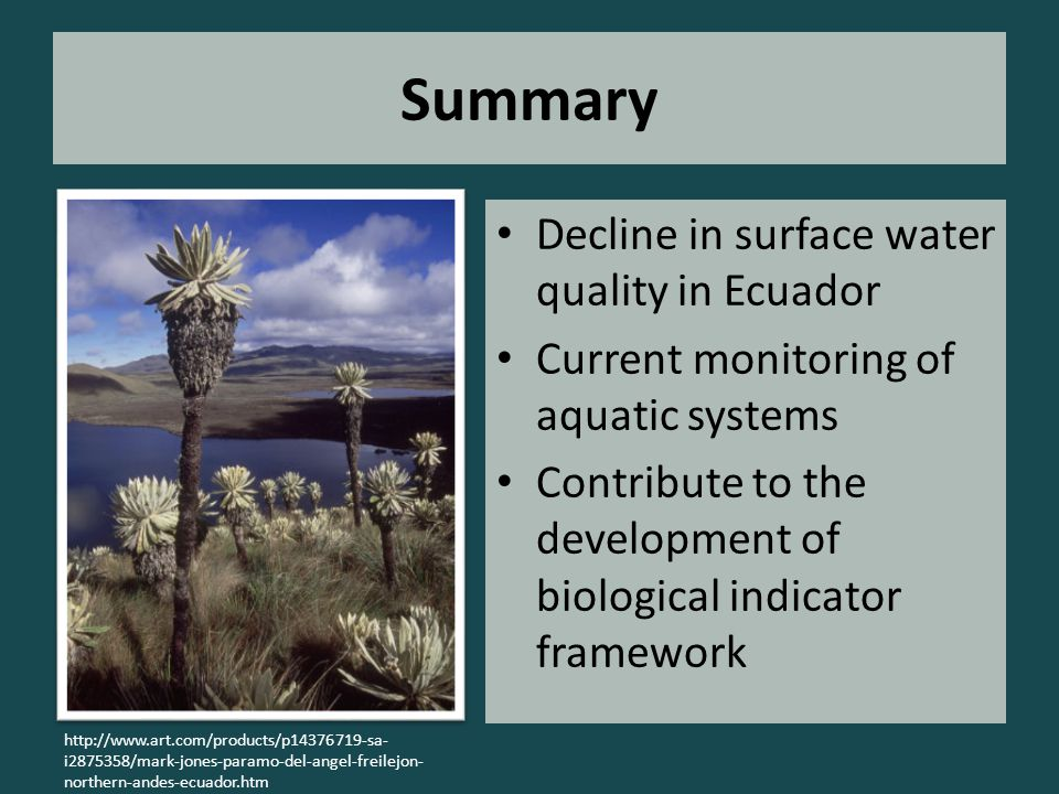 Summary Decline in surface water quality in Ecuador Current monitoring of aquatic systems Contribute to the development of biological indicator framework http://www.art.com/products/p14376719-sa- i2875358/mark-jones-paramo-del-angel-freilejon- northern-andes-ecuador.htm