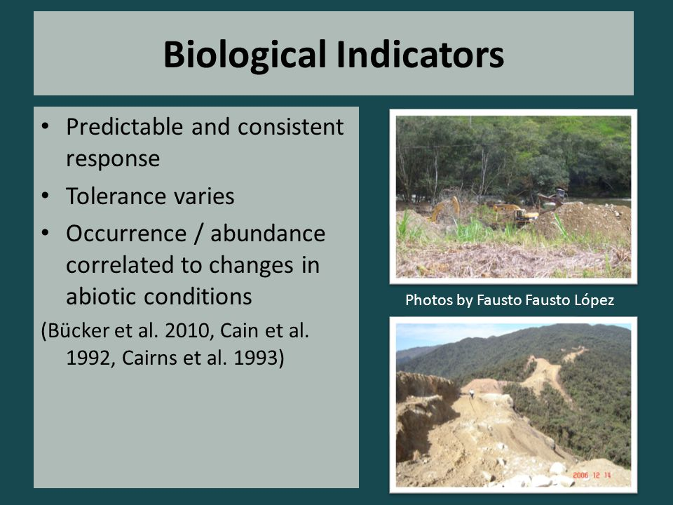 Biological Indicators Predictable and consistent response Tolerance varies Occurrence / abundance correlated to changes in abiotic conditions (Bücker et al.