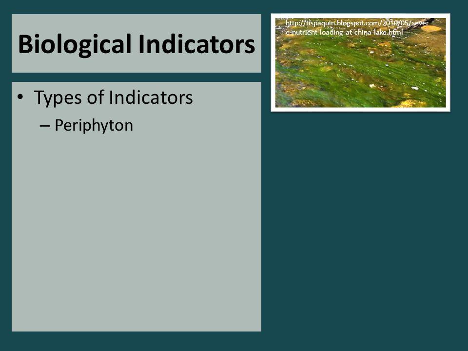 Biological Indicators Types of Indicators – Periphyton http://tispaquin.blogspot.com/2010/05/sever e-nutrient-loading-at-china-lake.html