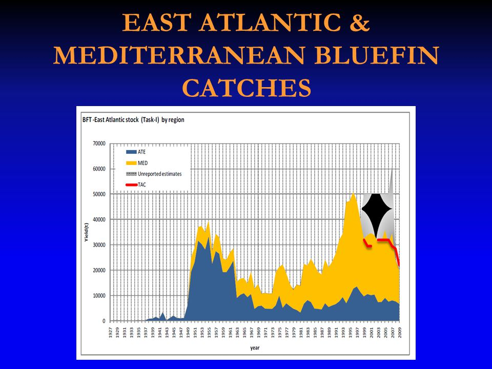 EAST ATLANTIC & MEDITERRANEAN BLUEFIN CATCHES