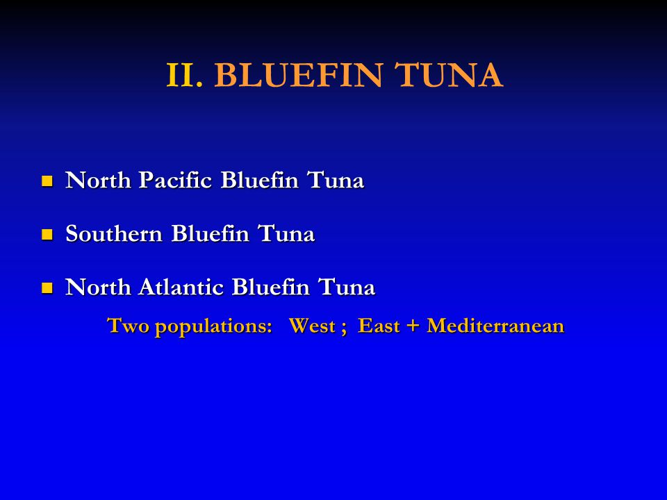 II. BLUEFIN TUNA North Pacific Bluefin Tuna North Pacific Bluefin Tuna Southern Bluefin Tuna Southern Bluefin Tuna North Atlantic Bluefin Tuna North A