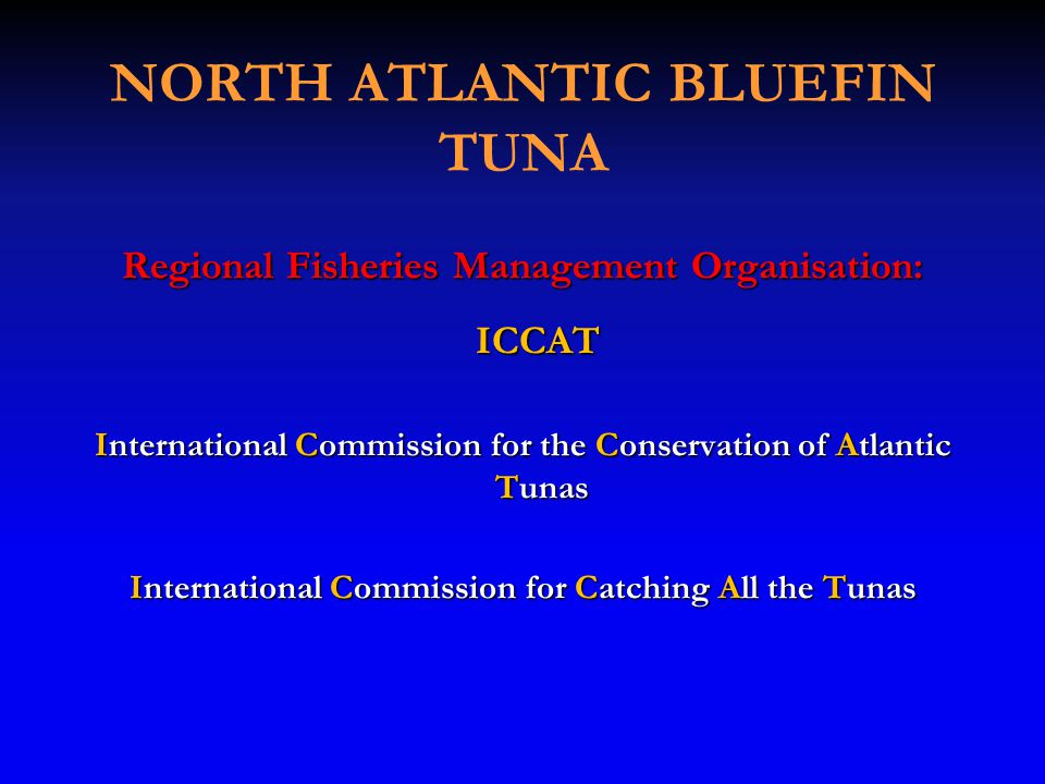 NORTH ATLANTIC BLUEFIN TUNA Regional Fisheries Management Organisation: ICCAT ICCAT International Commission for the Conservation of Atlantic Tunas International Commission for Catching All the Tunas