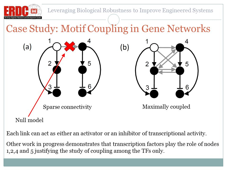 Leveraging Biological Robustness to Improve Engineered Systems Case Study: Motif Coupling in Gene Networks Sparse connectivity Maximally coupled Null model Each link can act as either an activator or an inhibitor of transcriptional activity.