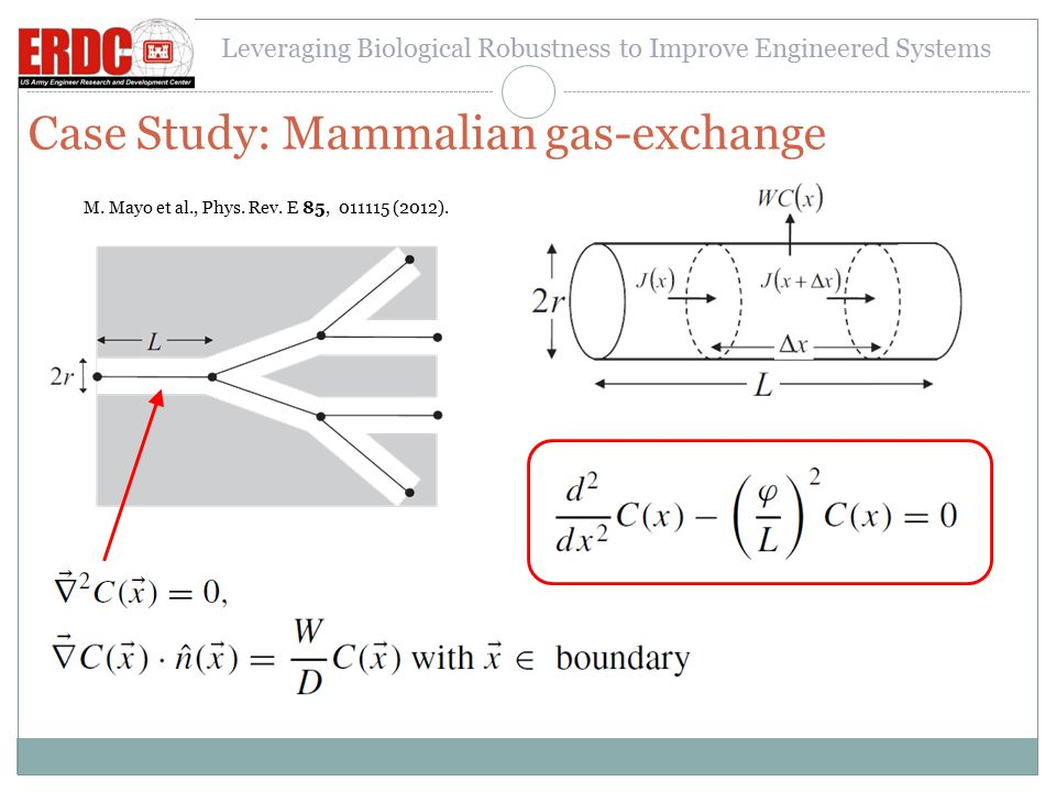 Leveraging Biological Robustness to Improve Engineered Systems Case Study: Teleost Reproductive Axis The conceptual and mathematical model Built from equations of the type: Creation flux Elimination flux (i.e.