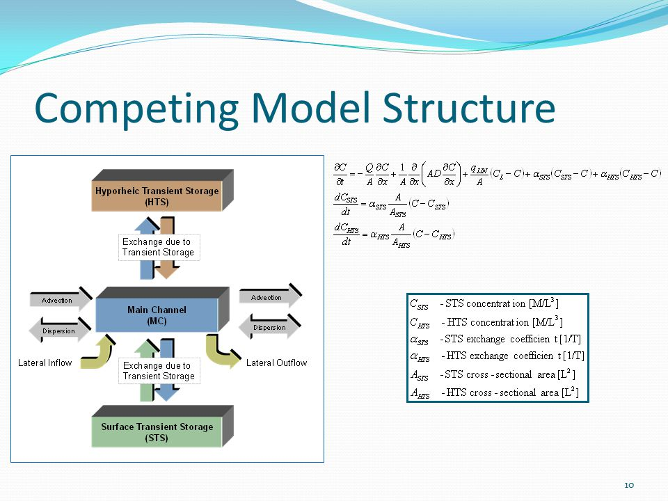 Competing Model Structure 10