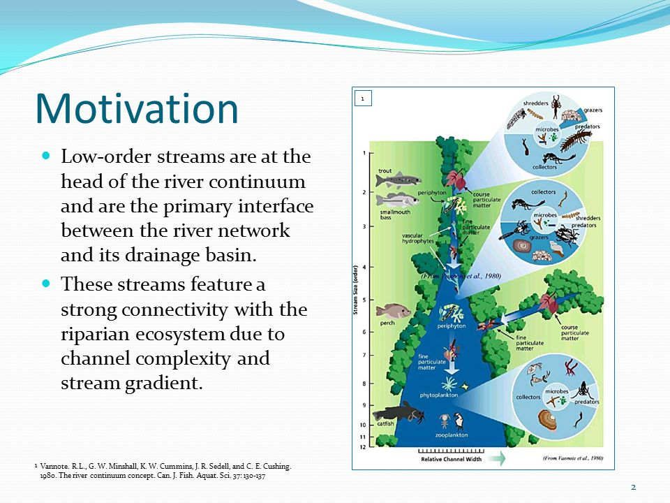 Motivation Low-order streams are at the head of the river continuum and are the primary interface between the river network and its drainage basin.