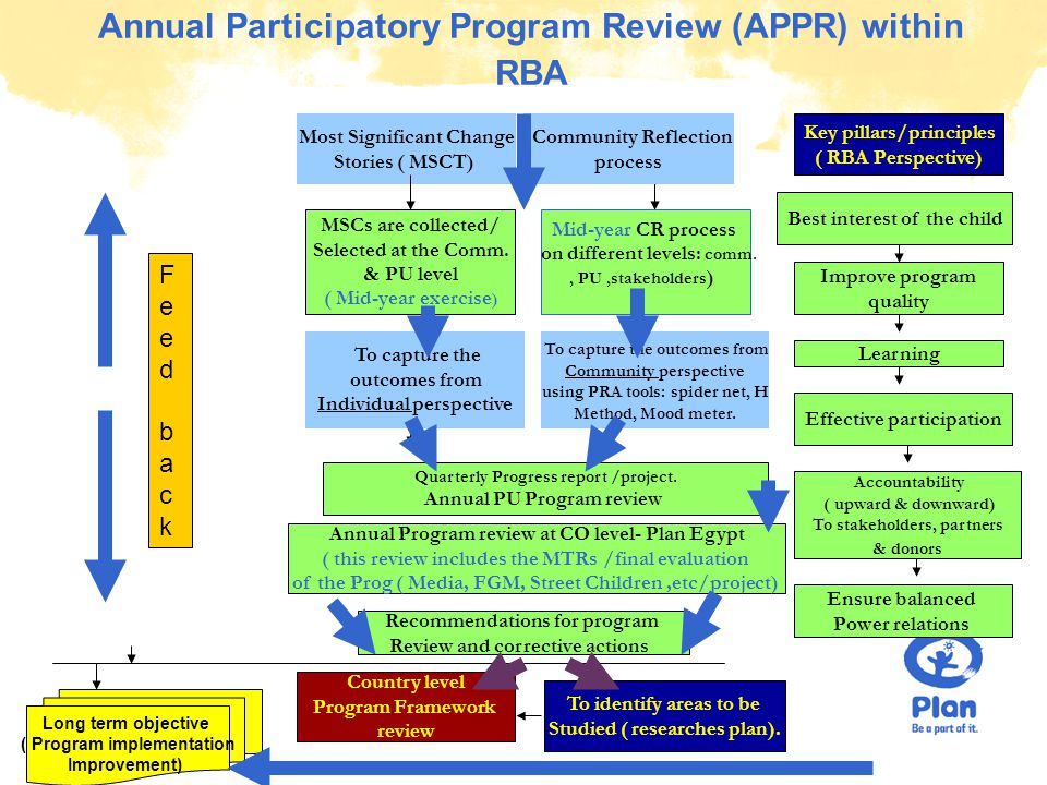 © Plan Annual Participatory Program Review (APPR) within RBA Key pillars/principles ( RBA Perspective) Quarterly Progress report /project.