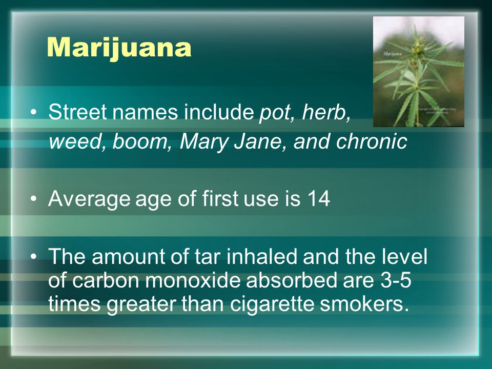 Marijuana Street names include pot, herb, weed, boom, Mary Jane, and chronic Average age of first use is 14 The amount of tar inhaled and the level of carbon monoxide absorbed are 3-5 times greater than cigarette smokers.