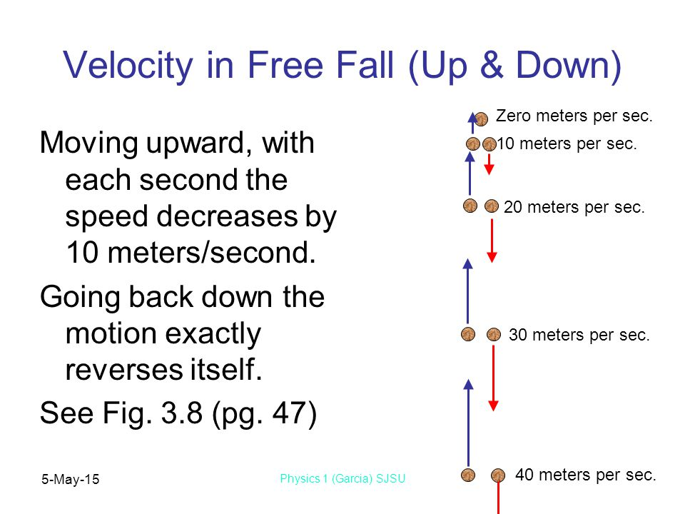 5-May-15 Physics 1 (Garcia) SJSU Velocity in Free Fall (Up & Down) Moving upward, with each second the speed decreases by 10 meters/second.