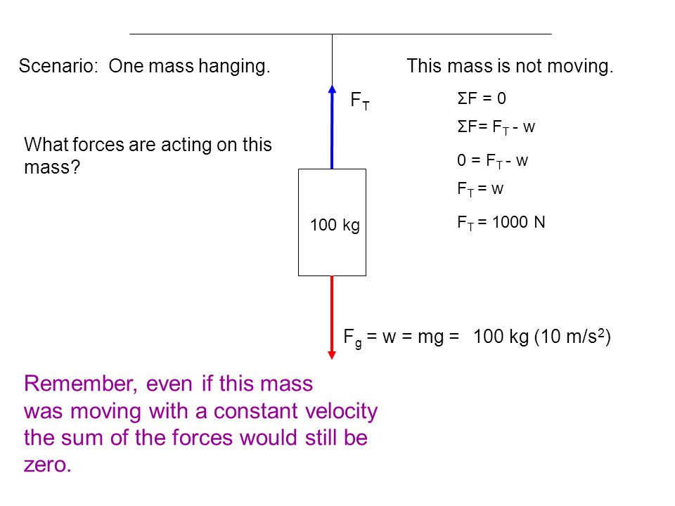 100 kg Scenario: One mass hanging.What forces are acting on this mass.