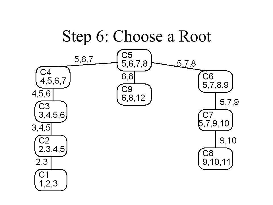 Step 6: Choose a Root