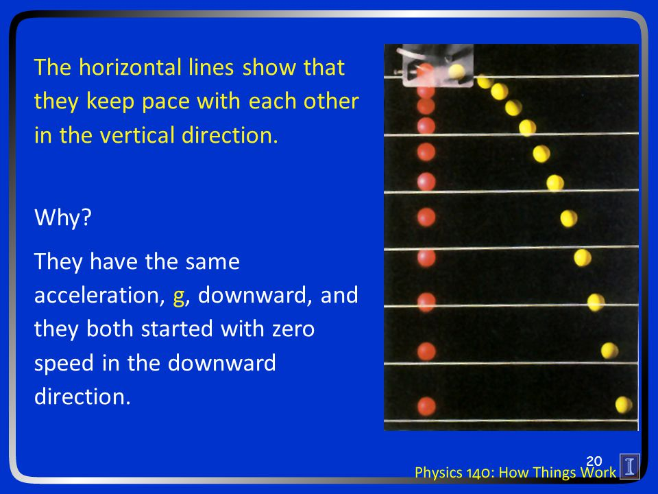 The horizontal lines show that they keep pace with each other in the vertical direction. Why? They have the same acceleration, g, downward, and they b
