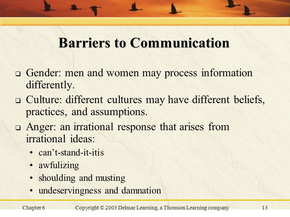 Chapter 6Copyright © 2003 Delmar Learning, a Thomson Learning company13 Barriers to Communication  Gender: men and women may process information differently.