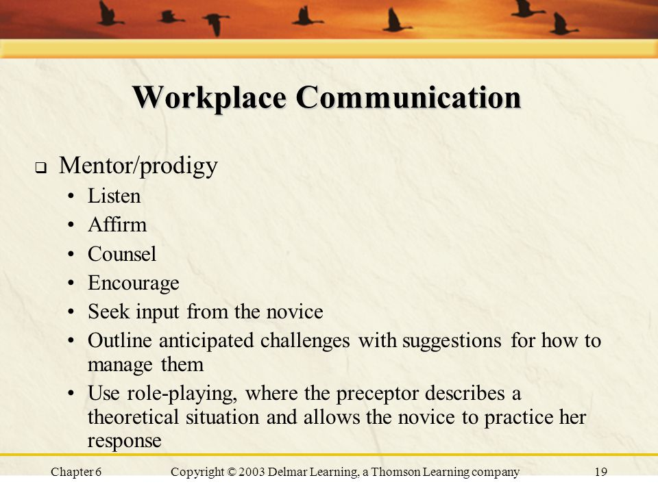 Chapter 6Copyright © 2003 Delmar Learning, a Thomson Learning company19 Workplace Communication  Mentor/prodigy Listen Affirm Counsel Encourage Seek input from the novice Outline anticipated challenges with suggestions for how to manage them Use role-playing, where the preceptor describes a theoretical situation and allows the novice to practice her response