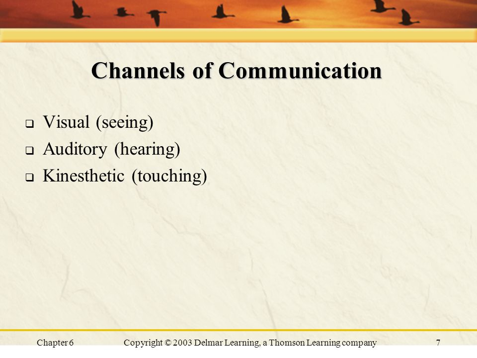 Chapter 6Copyright © 2003 Delmar Learning, a Thomson Learning company7 Channels of Communication  Visual (seeing)  Auditory (hearing)  Kinesthetic (touching)