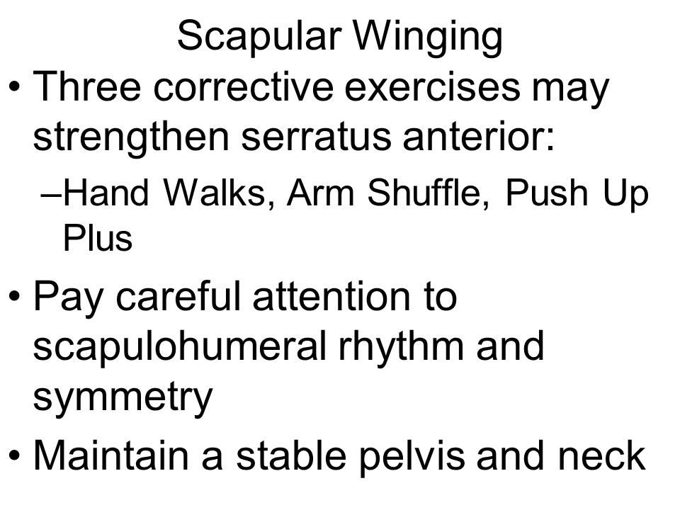 Scapular Winging Three corrective exercises may strengthen serratus anterior: –Hand Walks, Arm Shuffle, Push Up Plus Pay careful attention to scapuloh