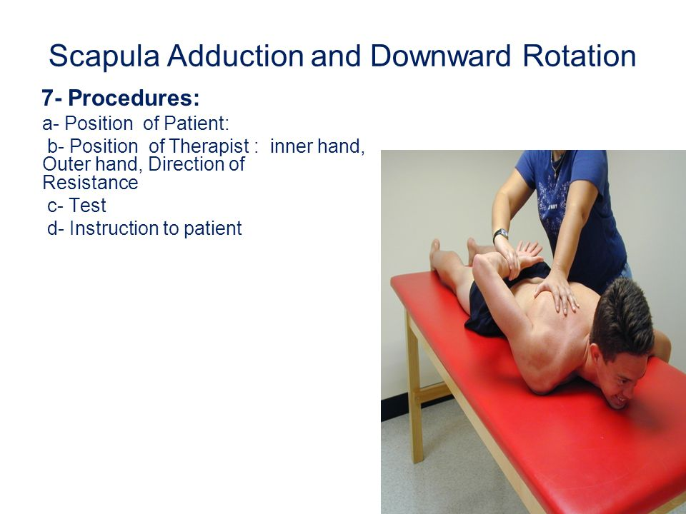 Scapula Adduction and Downward Rotation 7- Procedures: a- Position of Patient: b- Position of Therapist : inner hand, Outer hand, Direction of Resista