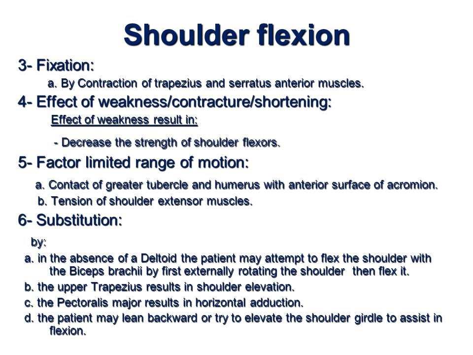 Shoulder flexion 3- Fixation: a. By Contraction of trapezius and serratus anterior muscles. a. By Contraction of trapezius and serratus anterior muscl