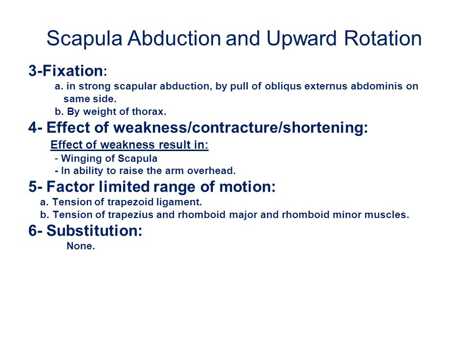 Scapula Abduction and Upward Rotation 3-Fixation : a. in strong scapular abduction, by pull of obliqus externus abdominis on same side. b. By weight o
