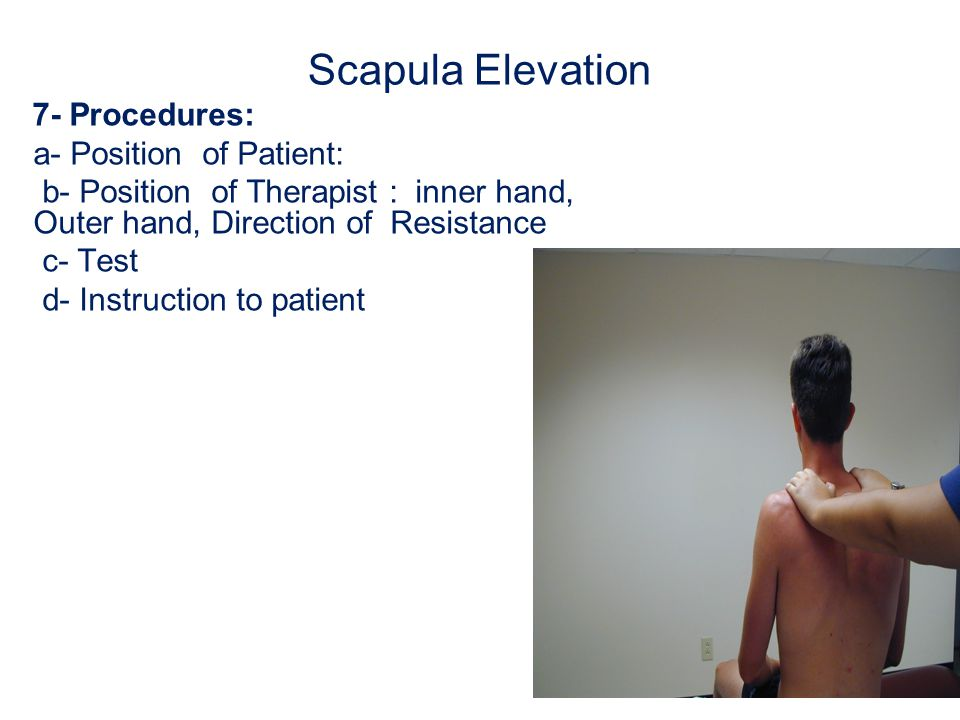 Scapula Adduction (Retraction) 1- Prime mover/agonist: Trapezius Trapezius ) (middle fibers) Synergist/ Accessory muscles: Rhomboid major and minor, and Trapezius (upper and lower fibers) 2- Range of motion: measure the distance between transverse process and medial border of scapula
