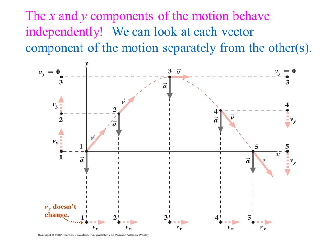 The inward force for an object in circular motion is called the centripetal force.
