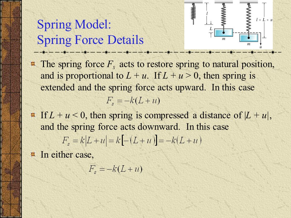 Spring Model: Spring Force Details The spring force F s acts to restore spring to natural position, and is proportional to L + u.