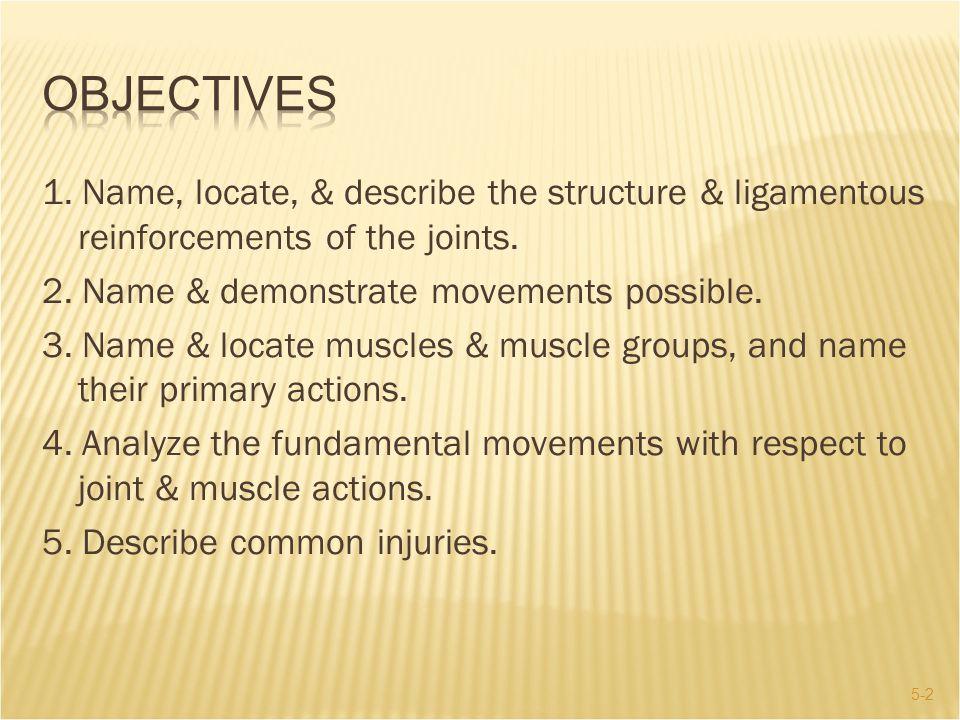 5-33  Shoulder Joint: External Rotation  Infraspinatus & teres minor  Shoulder Girdle: Adduction of scapula  Rhomboids & trapezius III.