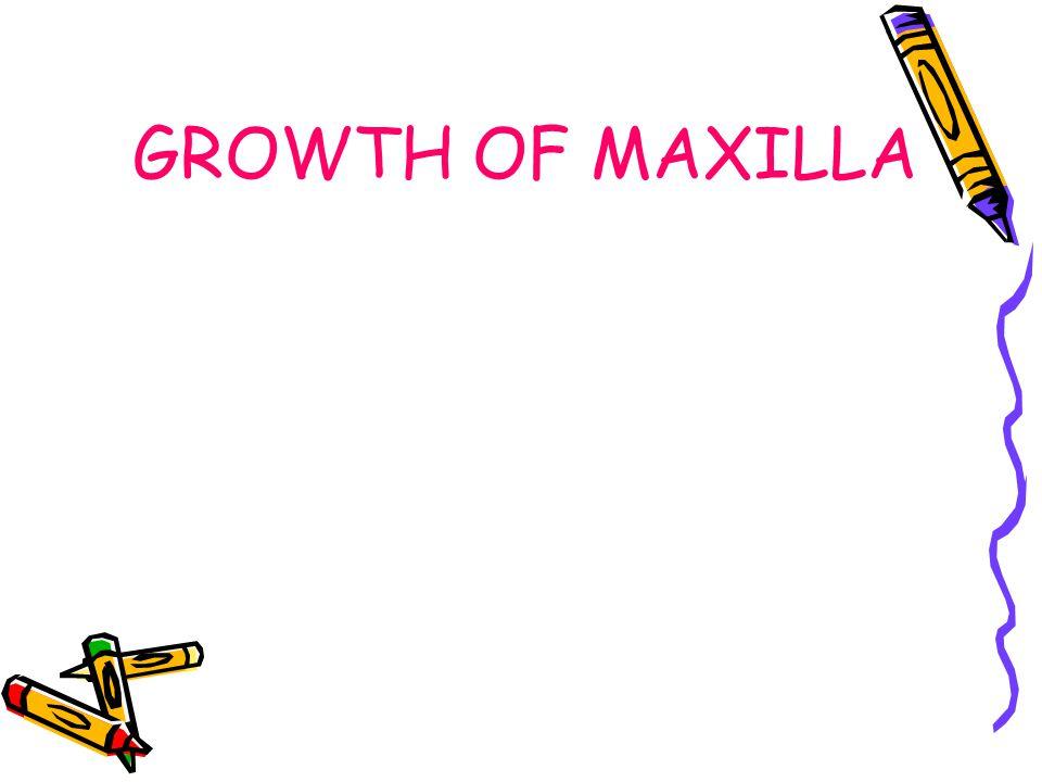 GROWTH OF MAXILLA
