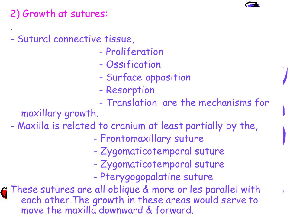 2) Growth at sutures:. - Sutural connective tissue, - Proliferation - Ossification - Surface apposition - Resorption - Translation are the mechanisms