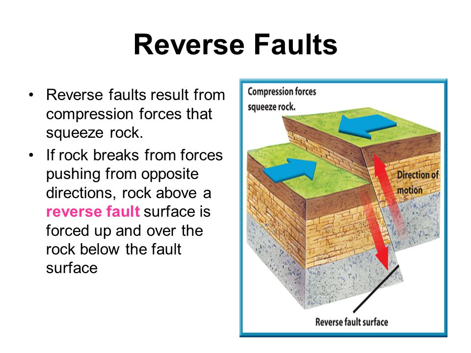 Reverse Faults Reverse faults result from compression forces that squeeze rock. If rock breaks from forces pushing from opposite directions, rock abov