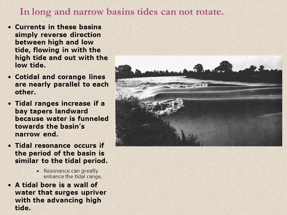 In long and narrow basins tides can not rotate. Currents in these basins simply reverse direction between high and low tide, flowing in with the high